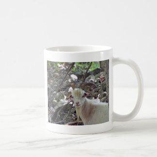 Billy Goat Coffee Mug
