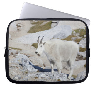 Billy goat, in Upper Enchantments Computer Sleeve