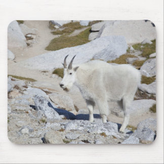Billy goat, in Upper Enchantments Mouse Pad