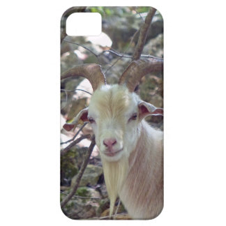 Billy Goat iPhone SE/5/5s Case