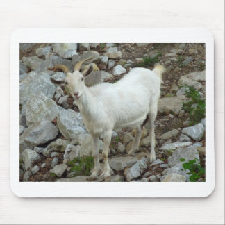 Billy Goat Mouse Pad