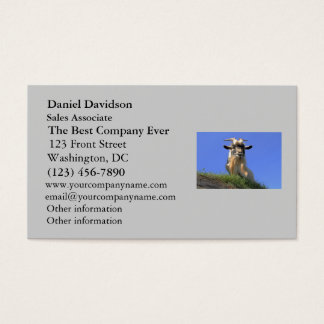 Billy Goat Photo Business Card