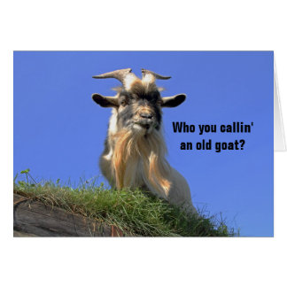 Billy Goat Photo Greeting Card