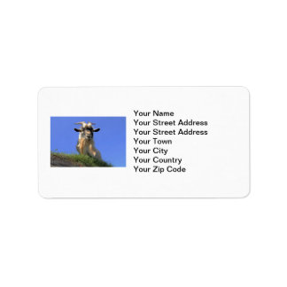 Billy Goat Photo Custom Address Label