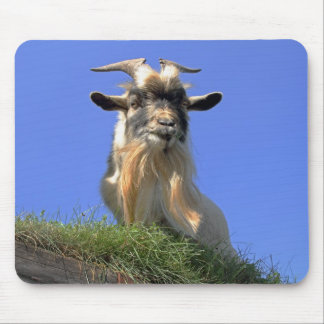 Billy Goat Photo Mouse Pad