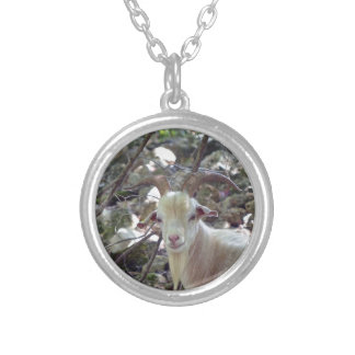 Billy Goat Round Pendant Necklace
