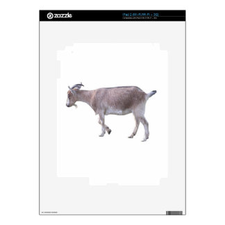 Billy Goat Skins For The iPad 2