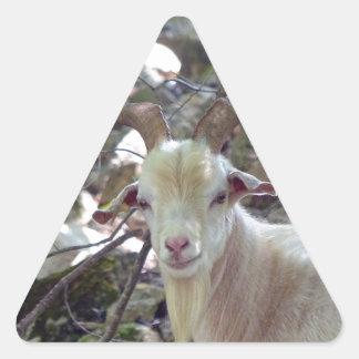 Billy Goat Triangle Sticker