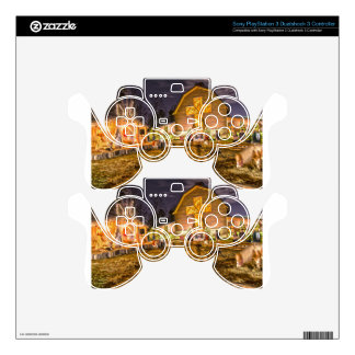 billy graham library PS3 controller skins