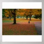 Billy In Autumn Print