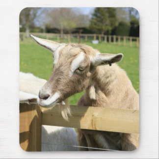 Billy the Goat Mousepad