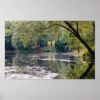biltmore lake poster