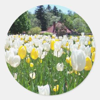 Biltmore Tulips Stickers