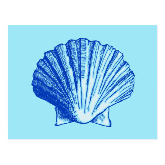 Bimini Blue Sea Shell Postcard