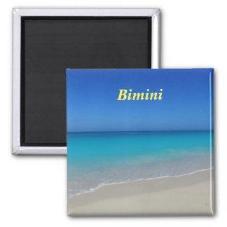 Bimini magnet