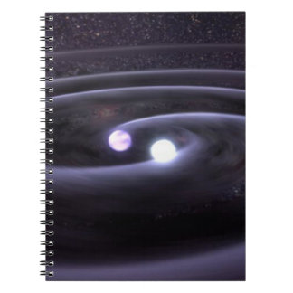 Binary White Dwarf Notebook