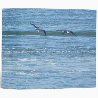 Binder Atlantic Brant Geese (Branta bernicla hrota