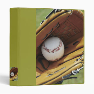 Binder / Baseball & Glove