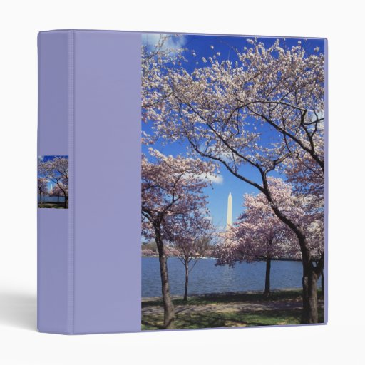 Binder / Cherry Blossom Time