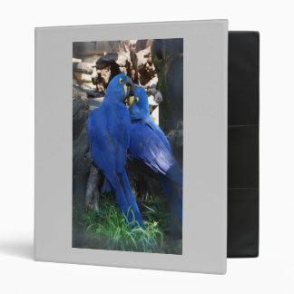 Binder - Parrots