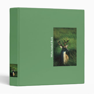 Binder / White-tailed Buck