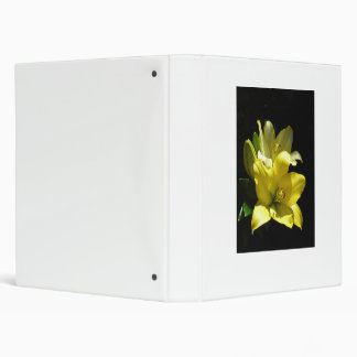 Binder, yellow lilies extract, white binder