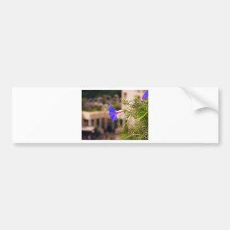 Bindweed.jpg Bumper Sticker