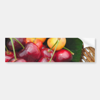 Bing And Rainier Cherries Bumper Sticker