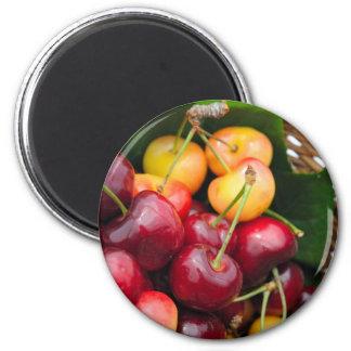 Bing And Rainier Cherries Magnet