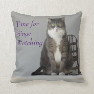 Binge-Watching Pillow Gift for you or others