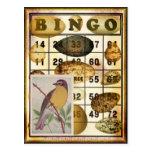 Bingo Bird Post Card