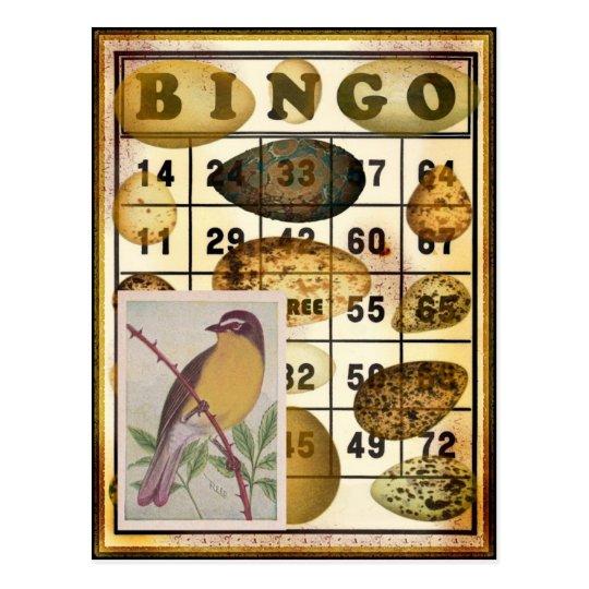 Bingo Bird Postcard