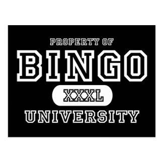 Bingo Univeristy Dark Postcard