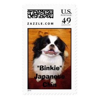 Binkie Envio