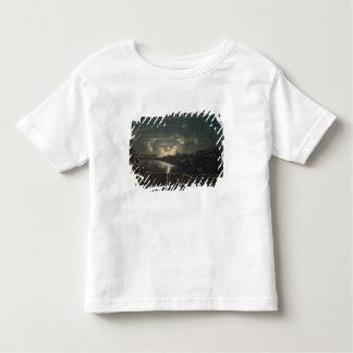 Binnenalster, 1764 toddler t-shirt