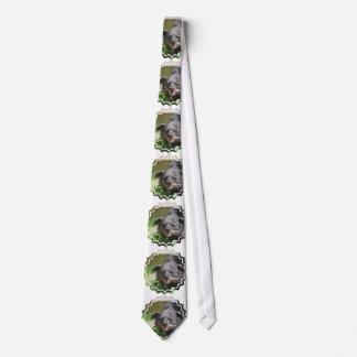 Binturong Neck Tie