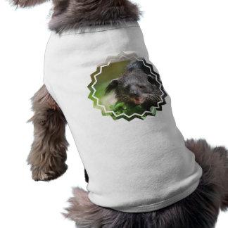 Binturong Pet Shirt