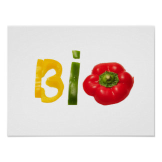 bio food vegetable slice text isolated diet health poster