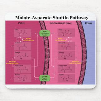 Biochemical Malate Aspartate Shuttle Diagram Mouse Pad
