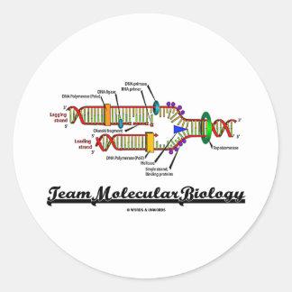Biología molecular del equipo (réplica de la DNA) Pegatina Redonda