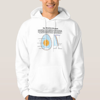 Biological Diagram of the Anatomy of an Egg Hoodie