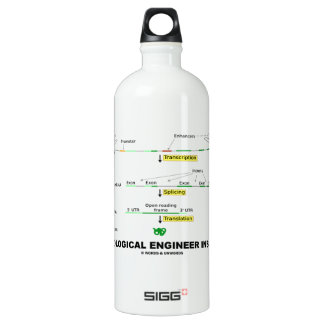 Biological Engineer Inside Aluminum Water Bottle