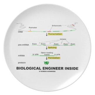 Biological Engineer Inside Plate