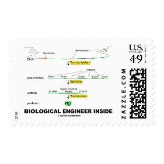 Biological Engineer Inside Postage