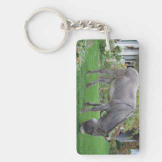 Biological Lawn-Mower On Four Hooves Keychain
