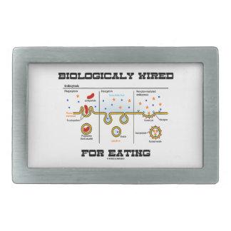 Biologically Wired For Eating (Endocytosis) Belt Buckle