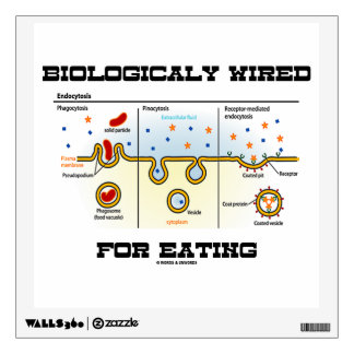 Biologically Wired For Eating (Endocytosis) Wall Decal