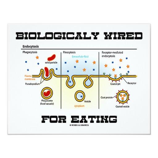 """Biológico atado con alambre para comer invitación 4.25"""" x 5.5"""""""