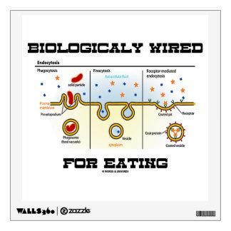 Biológico atado con alambre para comer vinilo