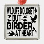 Biólogo de la fauna del amante del pájaro adorno de reyes
